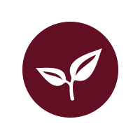 icon-wellness