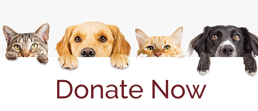 donate-humane-society